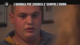 NINA: L'animale più crudele è sempre l'uomo thumbnail