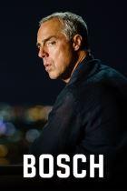 Bosch 3