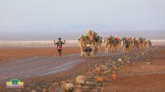 L'Etiopia più autentica thumbnail