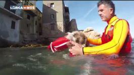 Gita al Faro thumbnail