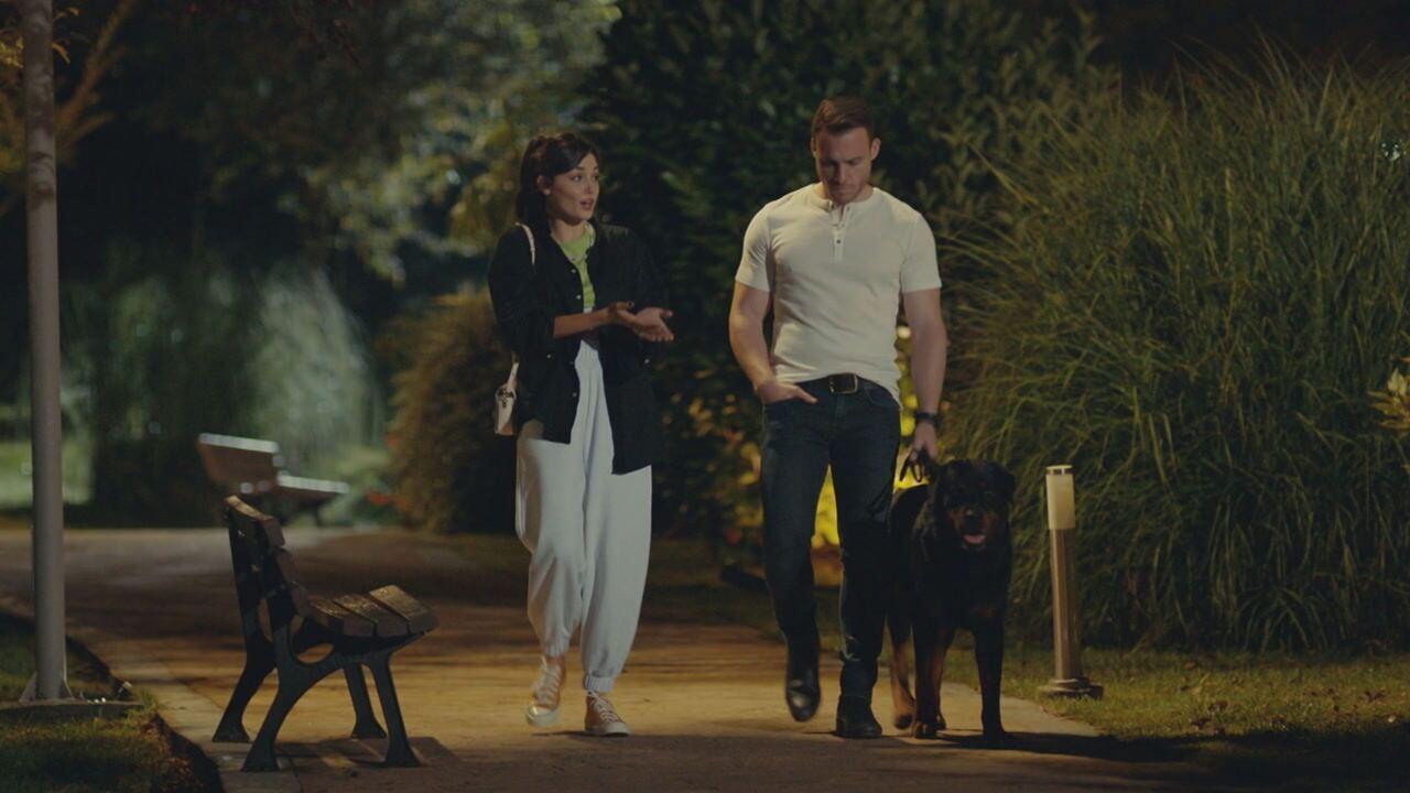 Love is in the Air, replica puntata del 10 giugno 2021 in streaming   Video Mediaset