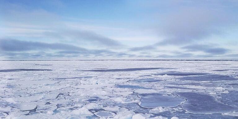 Focus Segreti nel ghiaccio
