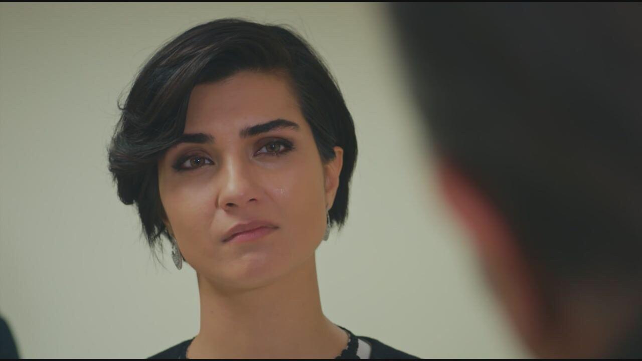 Brave and Beautiful, replica puntata del 18 agosto 2021 in streaming   Video Mediaset