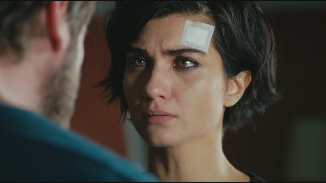 Brave and Beautiful, replica puntata del 8 settembre 2021 in streaming   Video Mediaset